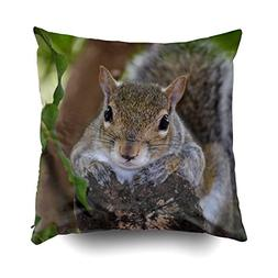 EMMTEEY Home Decor Throw Pillowcase for Sofa Cushion Cover,