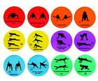 Sportime Strength Spots, 10 Inches, Set of 12