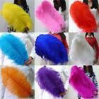 Wholesale 100pcs high quality natural ostrich feathers 16-28