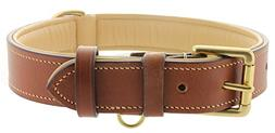 Viosi Leather Padded Dog Collar - Made of Genuine Kingston L